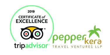 best travels tripadvisor
